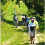 Pèlerinage Verdelais Lourdes à pied